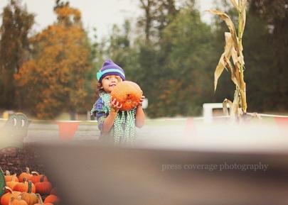 fall 14
