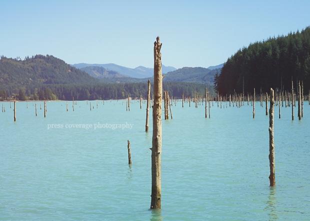 alder lake 01
